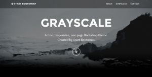 8. Grayscale